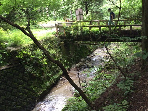 金剛山〜ダイヤモンドトレール もうすぐ水越峠