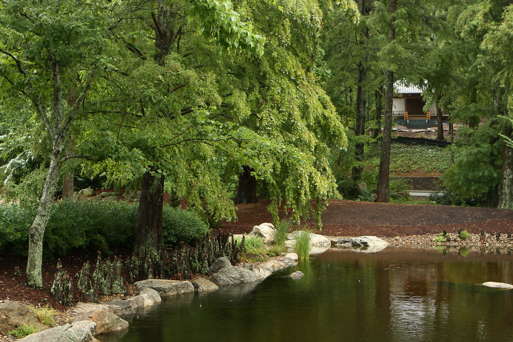 Furman University Asian Garden | Another peaceful and educat… | Flickr