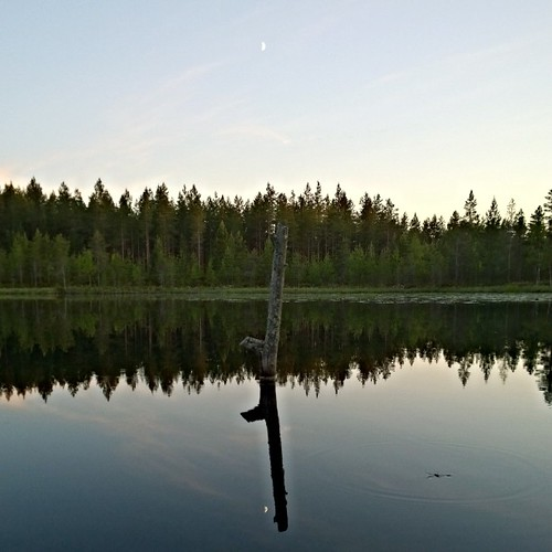 #flymetothemoon #climbtothemoon #reflections #mökki #soinicityhomeboy #peace | by Media Viking Snaps