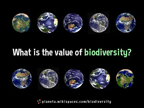 What is the value of biodiversity? http://planeta.wikispaces.com/biodiversity
