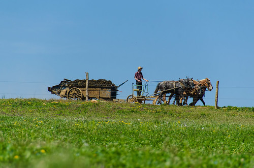 Amish Countryside Drive 2016 | by likeaduck