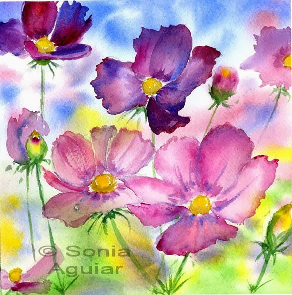 flower watercolor art cosmos flowers zentacuarelas blogs flickr