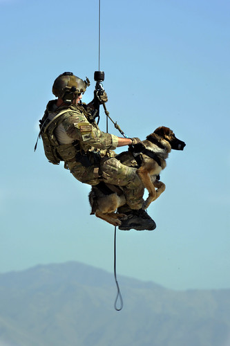 Pararescueman train with Army, military canines | by Official U.S. Air Force