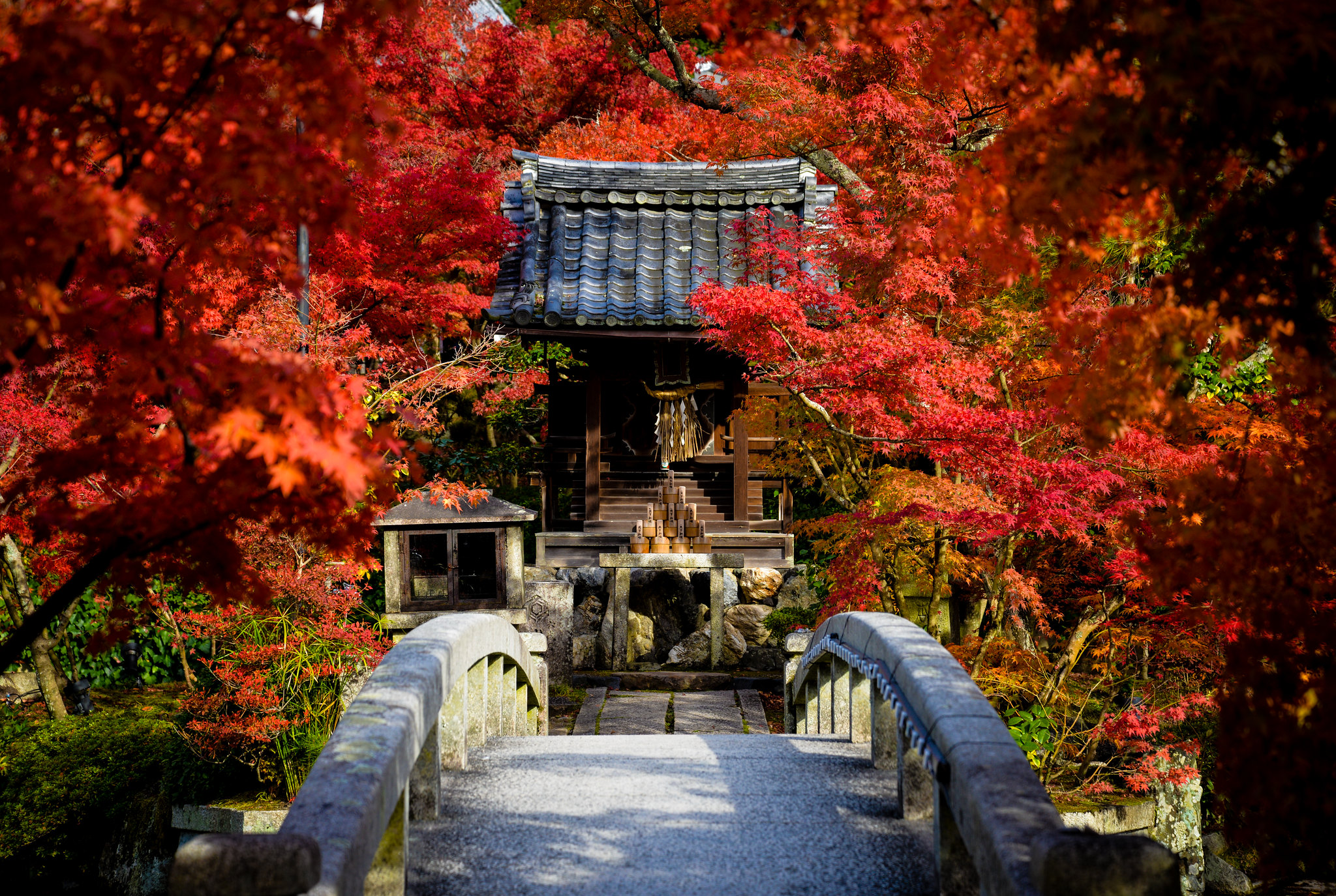 Eikan-dō Zenrin-ji, Kyoto, Japan