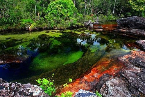 Caño Cristales, Colombia | by epheterson