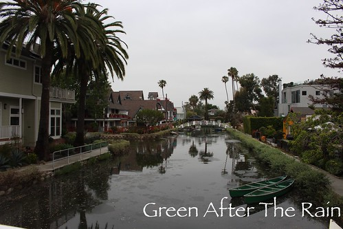 160610d Venice Canals _47