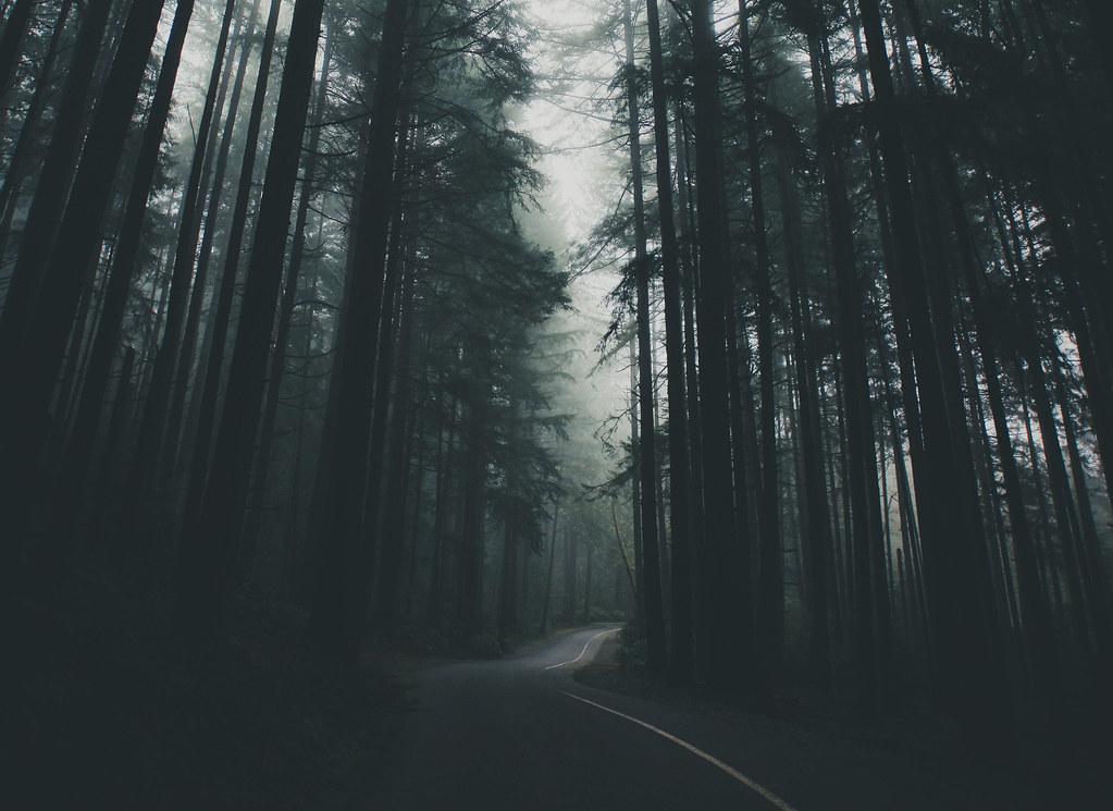 Lost Tumblr
