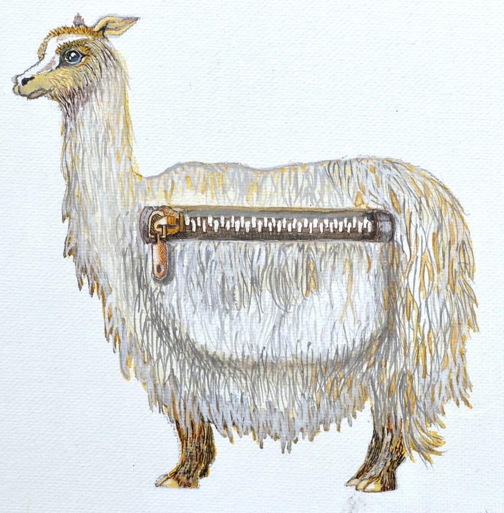 pack alpaca