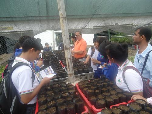 Alumnos de los colegios dr alfredo vera vera y sarah flor for Manejo de viveros forestales