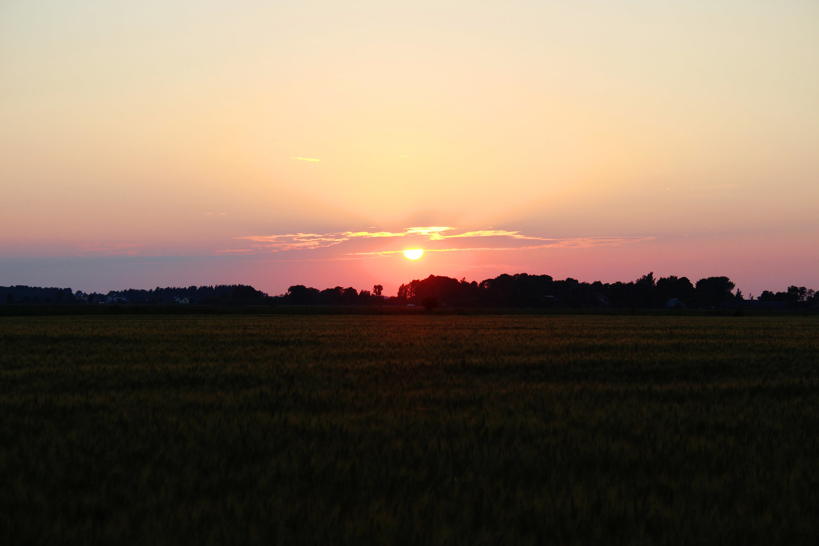 Sunset in the countryside