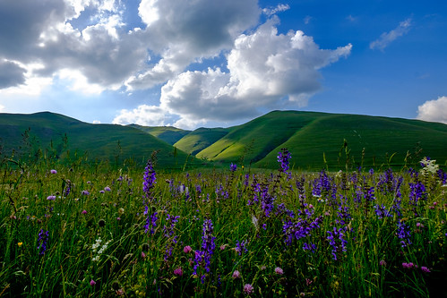 Colline | by Domenico Laviano
