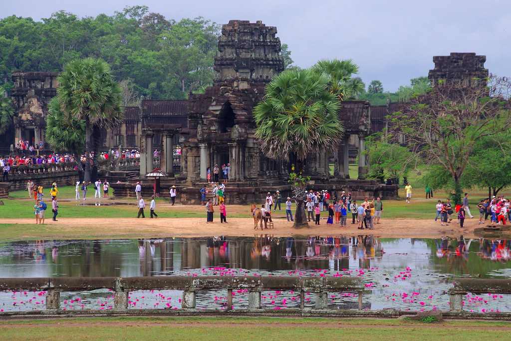 Tourists and water lilies (Angkor Wat, Cambodia)
