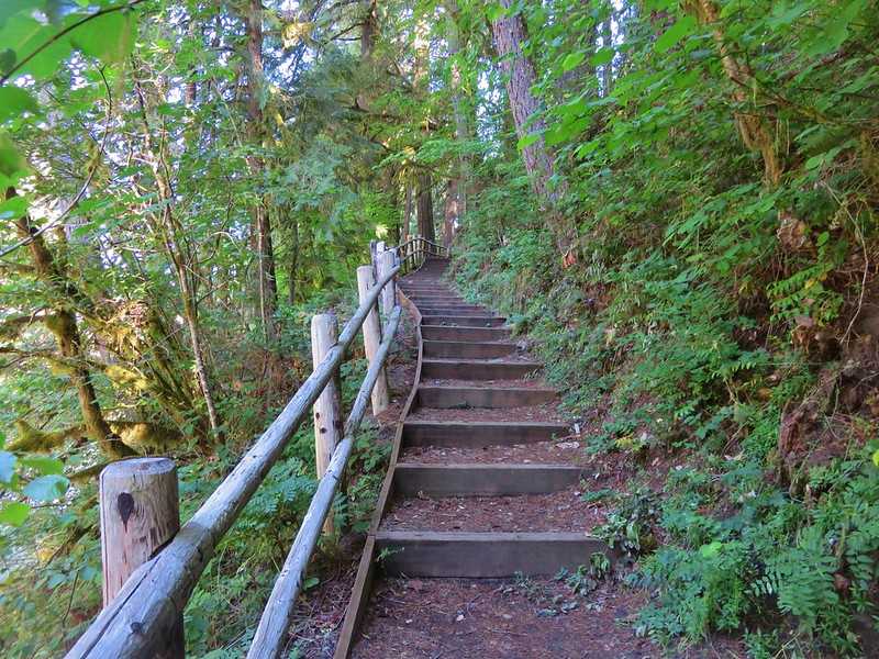 Stairs in Cascadia State Park down to the South Santiam River