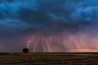Lightning storm over the tree | by Nick-K (Nikos Koutoulas)
