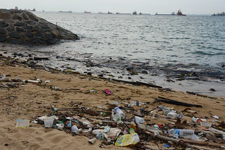 Litter on Singapore's ECP | by Vaidehi Shah