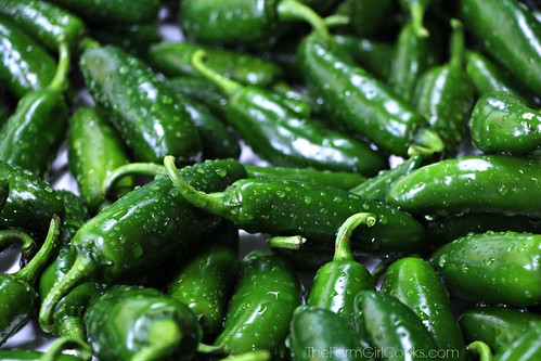 jalapenos | by The FarmGirl Cooks