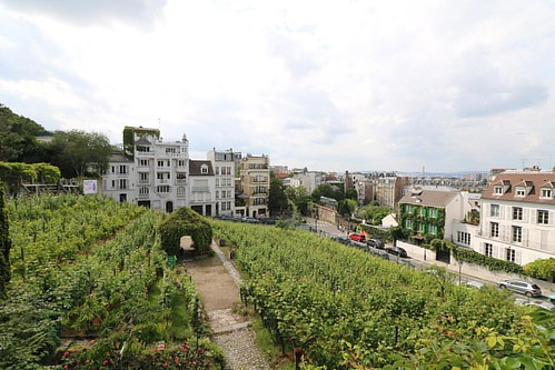les vignes de montmartre vues depuis le jardin du mus e de flickr. Black Bedroom Furniture Sets. Home Design Ideas