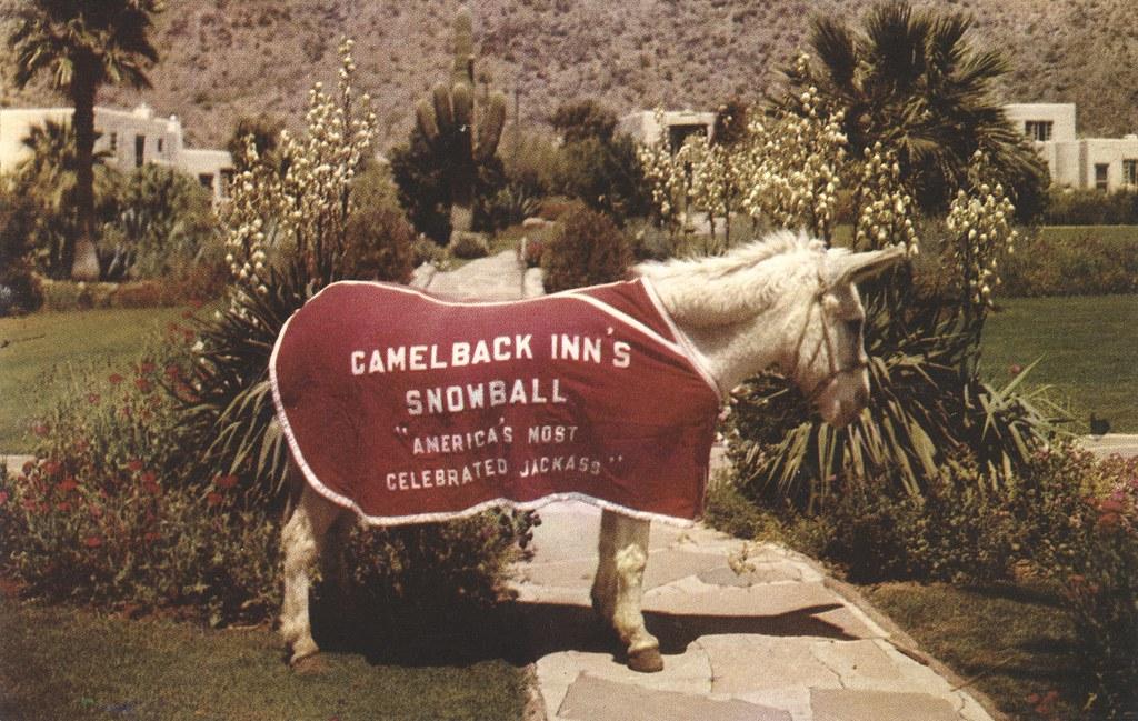 Camelback Inn - Phoenix, Arizona