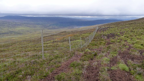 Deer fence on the way to Loch Errochty | by Nick Bramhall