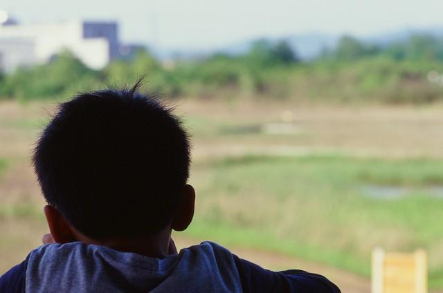 Viewing the landscape