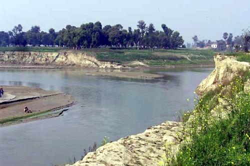 सिरनियां के पास बागमती और दरभंगा बागमती का संगम स्थल