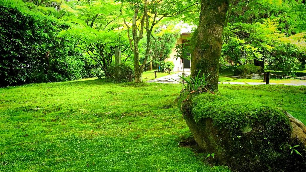 西芳寺(苔寺):Saiho-ji Temple (20160609)