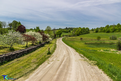 Country Road in Peacham | by Tim_NEK