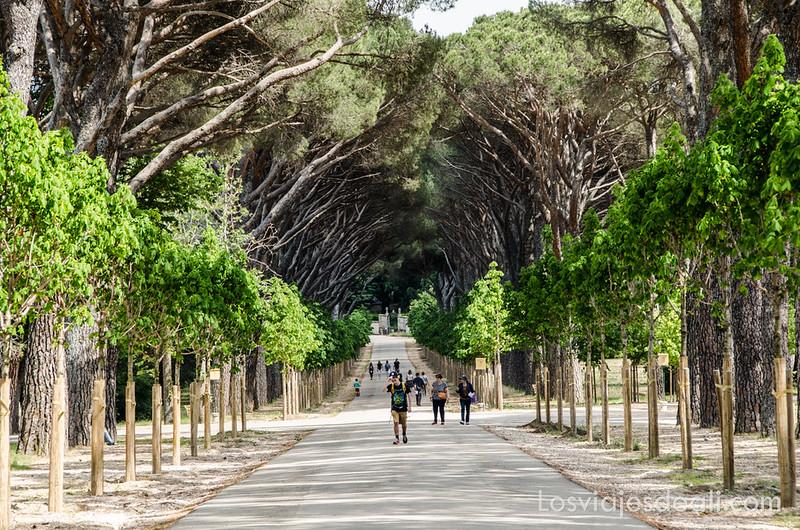 un fin de semana en la sierra de Madrid