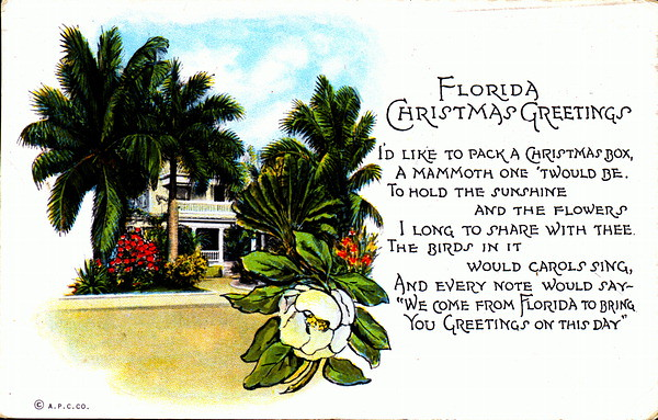 florida christmas greetings by state library and archives of florida - Florida Christmas