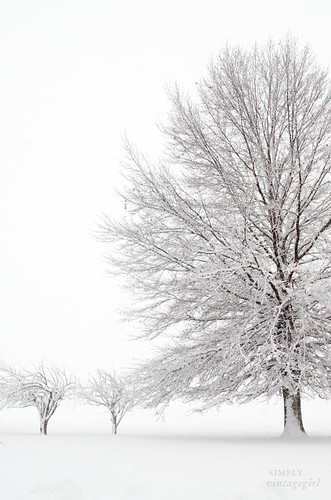 White World | by Simply Vintagegirl