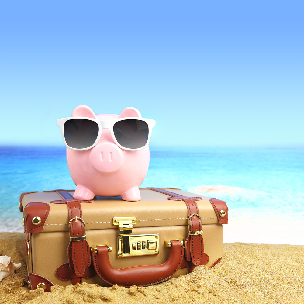 Image result for suitcase with piggy bank on top