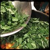 #Collards #Beans #Potatoes #Homemade #CucinaDelloZio - add collard (mix)