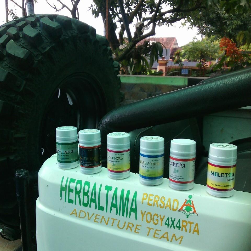 Herbaltama Persada Flickr Pastribu Herbal