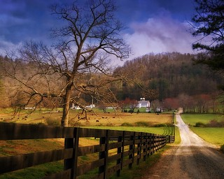Country Roads | by mturnau