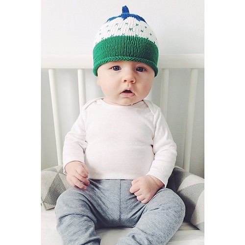A gift from Sweden!! Thank you for the lovely hat @huamajjsan and @mollewild - Charley loves it! #jamtlandsmossa #skymountainsforest #sweden | by anne ingman