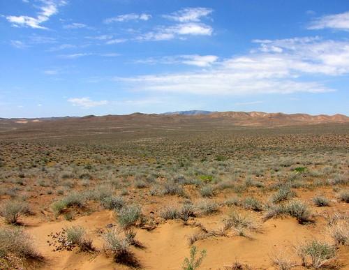 Kyzylkum Desert, Uzbekistan | The Kyzylkum Desert to the ...
