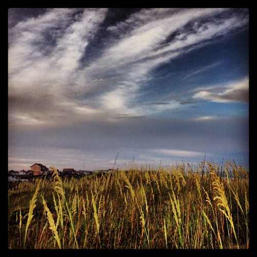 Sea oats and clouds | by frankreidjr