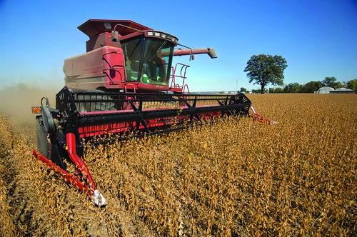 Agricoltura - foto di United Soybean Board