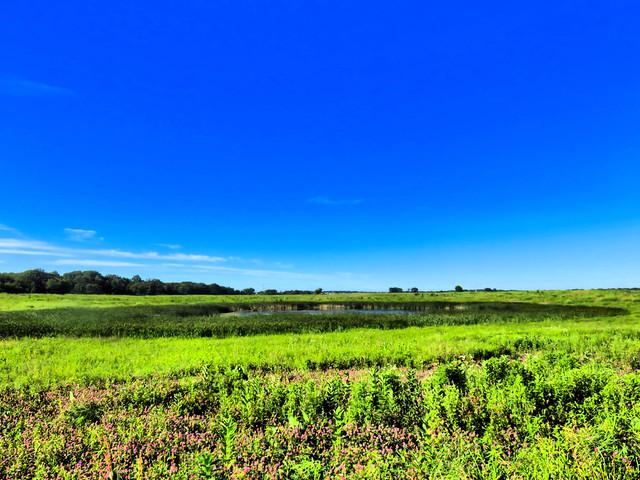 Nelson Lake prairie pothole HDR 20160627