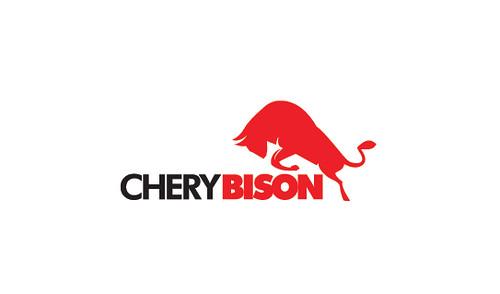 Mens American Bison Leather Wallet  American Bison