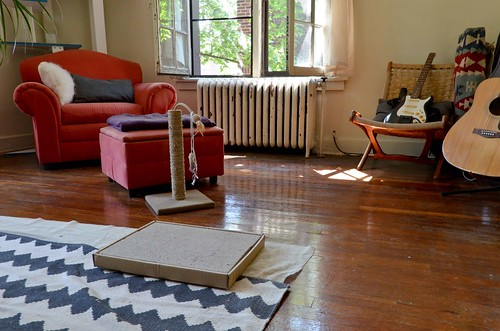 Cat-Proofing: Hidden kilims, scratching posts