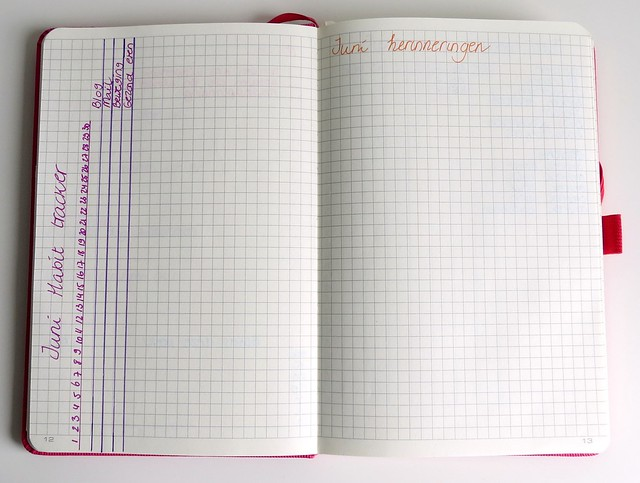 Bullet journal Conceptum habit tracker memories