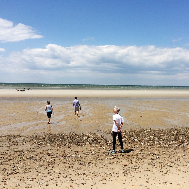 Sunday was perfect for a beach stroll at low tide. #crosbylanding #capecodsummer