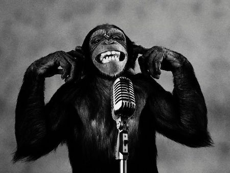 Chimp with a mic.