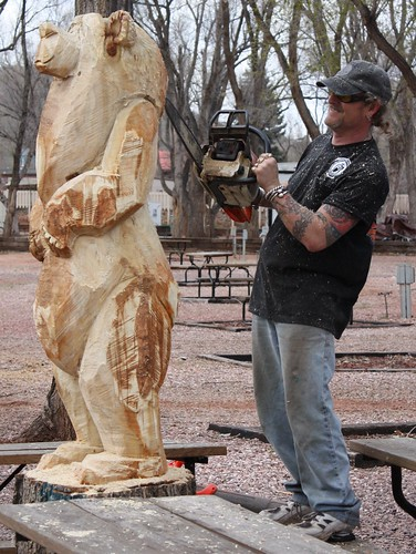 Chainsaw bear carving tree stump near manitou spring