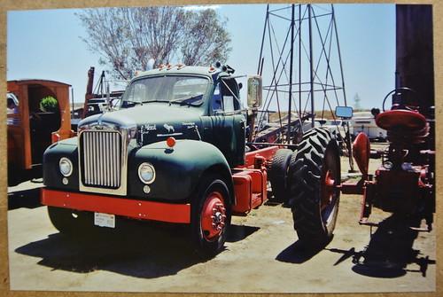 Mack Truck Dog Name
