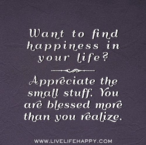 Appreciate Life Quotes: Want To Find Happiness In Your Life? Appreciate The Small