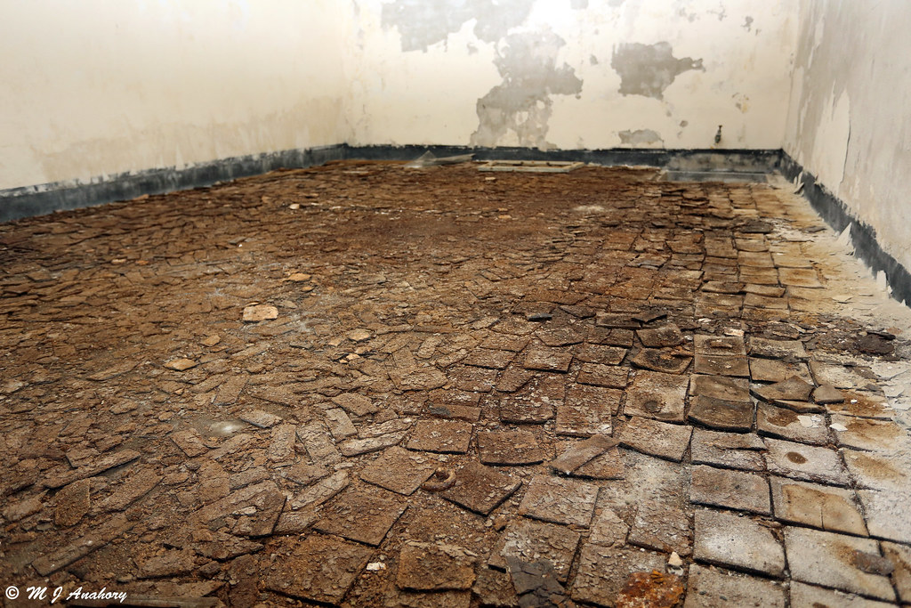 Cork Tile Floor for sound/heat insulation