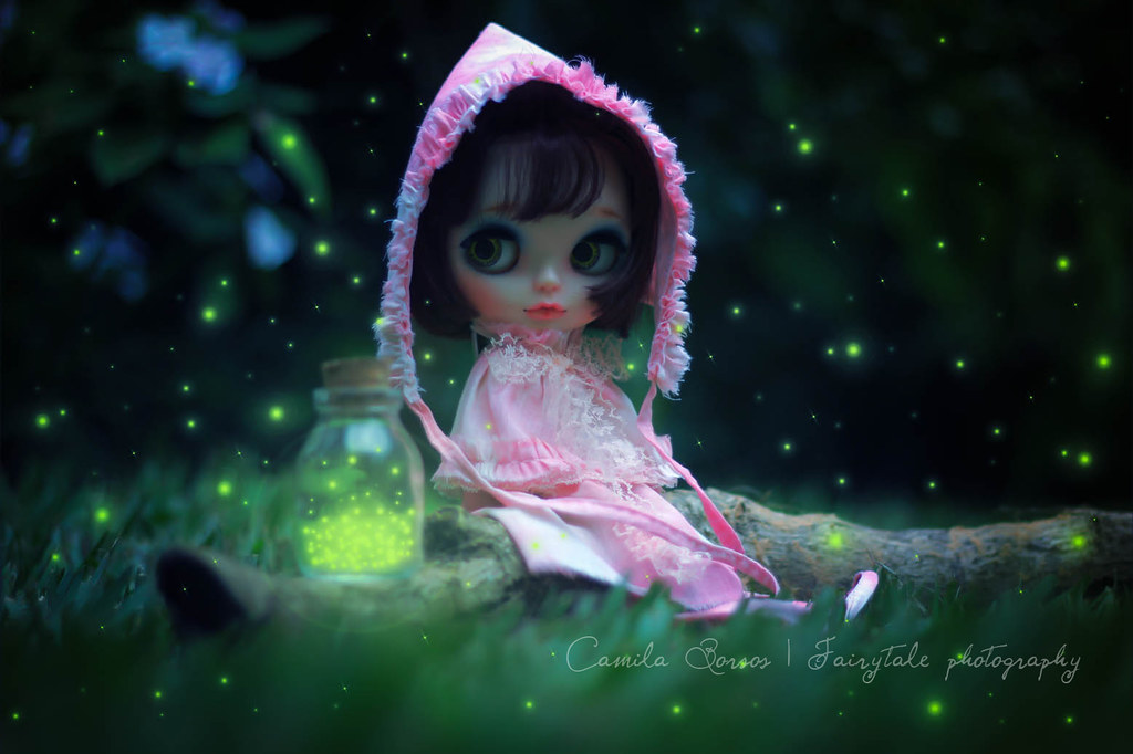 Catching Fireflies Camila Borsos Flickr
