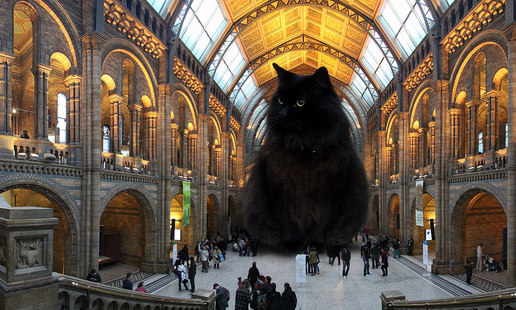 london s natural history museum unveils replacement for ic flickr
